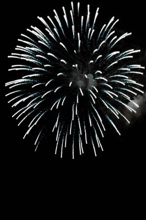 Beautiful fireworks exploding over a dark night sky. Stock Photo - 3743009