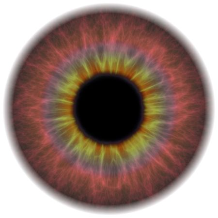A highly detailed iris section of the human eye.