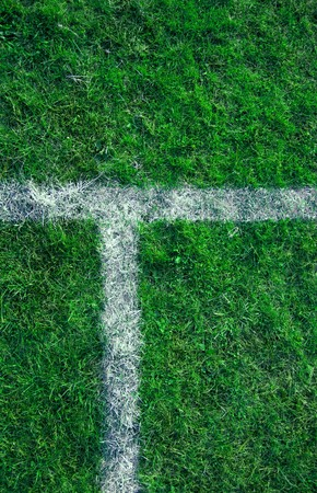 perpendicular: Sports lines painted on a green grassy playing field.