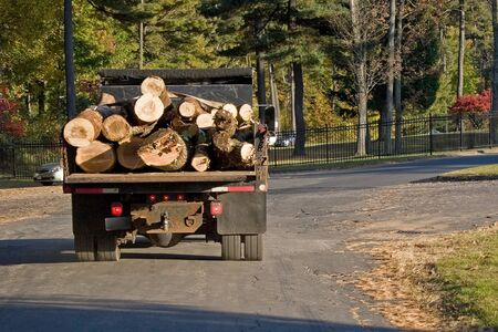 logging: A dump truck carrying a large load of wood logs.
