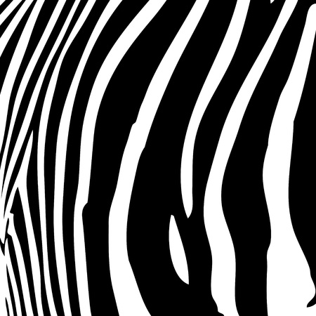Zebra stripes pattern in black and white that works great as a background. Vector