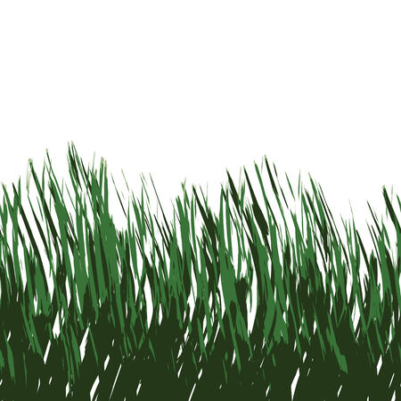 Green grass isolated over white - this tiles seamlessly as a pattern in any direction.