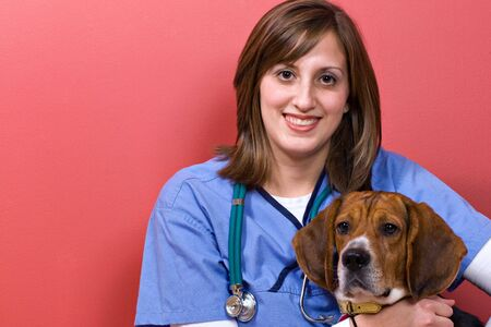 A veterinarian posing with a purebred beagle dog. Stock Photo - 4717263