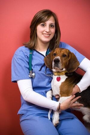 A veterinarian posing with a purebred beagle dog. photo