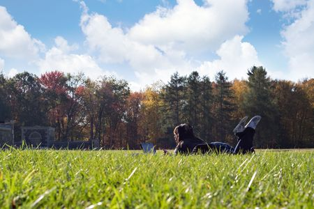 A young student using her laptop computer using the campus wi-fi internet access while laying in the grass on a nice day. photo