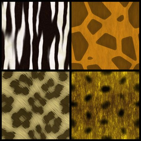 Set of animal print swatches that all tile seamlessly as a pattern. photo