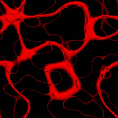 passageways: 3D illustration of veins or arteries carrying blood. This tiles seamlessly as a pattern. Stock Photo