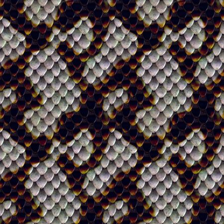 reptile: A scaly snake skin texture that tiles seamlessly as a pattern in any direction. Stock Photo