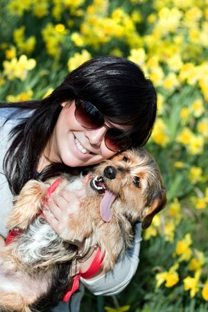 A cute terrier mix breed pup in the arms of a beautiful Spanish woman posing in front of the yellow daffodil flowers in the Spring time. photo