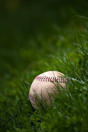 One aged and worn baseball sitting in the green grass. photo