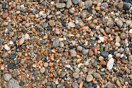 A close up view of wet pebbles and stones washed ashore on the beach. Stock Photo - 7054528