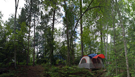 A wide angle panoramic view of a heavily wooded camp site in the Adirondacks. photo