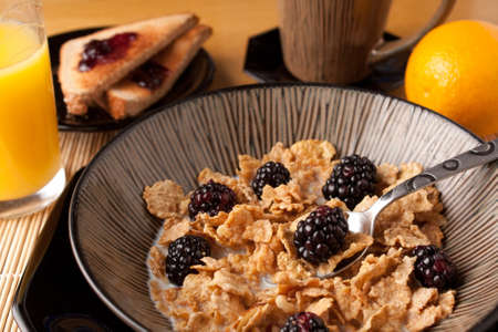 Close up of a spoon full of breakfast cereal flakes with almonds and blackberries.  Shallow depth of field. Stock Photo - 8578850