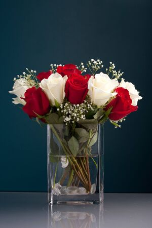 An arrangement of beautiful red and white roses with babys breath in a clear glass vase. photo