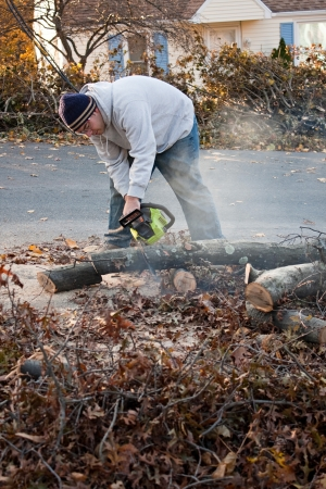chopping: Man cutting tree limbs with a chainsaw that have fallen from storm damage.  A late fall snow storm in the month of October was the cause.