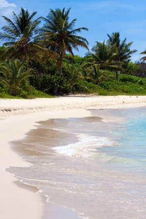 The breathtaking Flamenco beach on the Puerto Rican island of Culebra with palm trees and white sands. photo