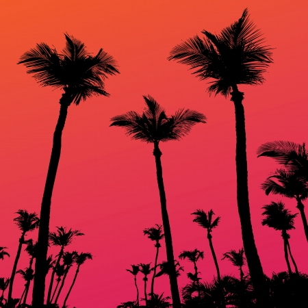 Tropical coconut palm tree silhouettes illustration over a purple sunset sky in format.