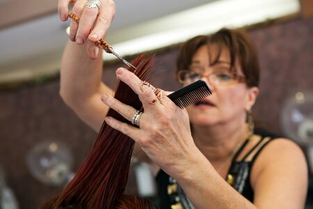 snipping: A young woman getting her hair cut by a professional hairdresser at a salon.  Shallow depth of field.