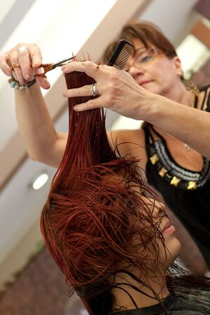 snipping: A young woman getting her red hair cut by a professional hairdresser at a salon.  Shallow depth of field.