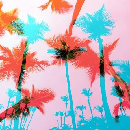 열대 하늘 위에 열 대 코코넛 야자수 실루엣 몽타주입니다.