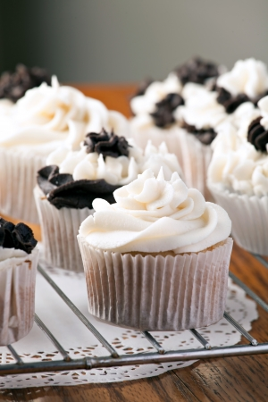 decadent: Close up of some decadent gourmet cupcakes with chocolate and vanilla frosting. Shallow depth of field. Stock Photo