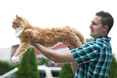 coon: Man holding his cherished purebred Maine Coon cat outright to show his size.  Shallow depth of field.