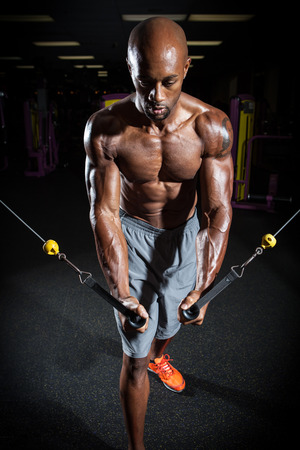 Muscular body builder working out  at the gym. photo