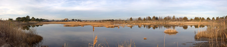 pano: Marsh area located at Meigs Point in Hammonasset State Park Connecticut USA.
