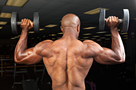 lifter: Strong back and shoulders on a  ripped lean muscle fitness man lifting weights.