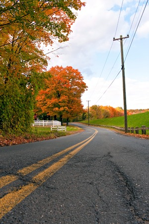Een helder oranje esdoorn in een landinstelling tijdens de herfst maanden.