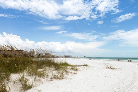 Siesta Key Beach is gelegen aan de Golf kust van Sarasota Florida met poederachtige zand. Onlangs beoordeelden de nummer 1 strand locatie in de Verenigde Staten. Ondiepe scherptediepte met focus op de grassen.