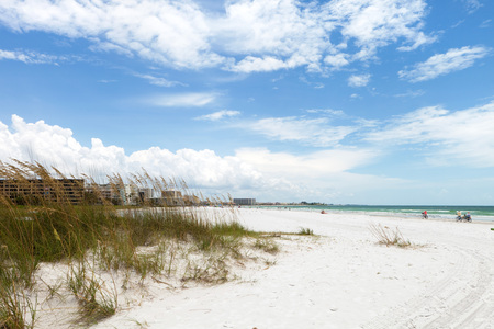 powdery: Siesta Key Beach is located on the gulf coast of Sarasota Florida with powdery sand. Recently rated the number 1 beach location in the United States. Shallow depth of field with focus on the grasses. Stock Photo