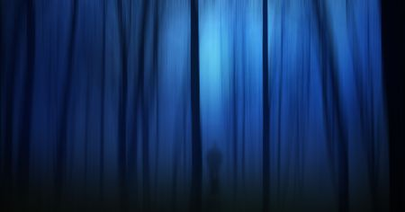 Dark ghostly forest with silhouette of a person photo