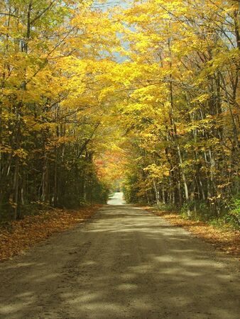 A picturesque gravel road on an October afternoon. 版權商用圖片
