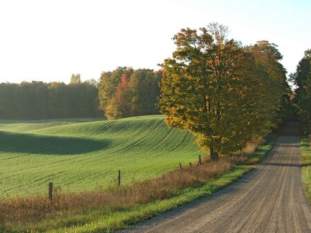 backroad: A gravel road on a sunny October morning. Stock Photo