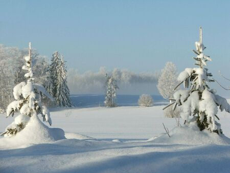 A picturesque snow scene resulting from a three day snowstorm.