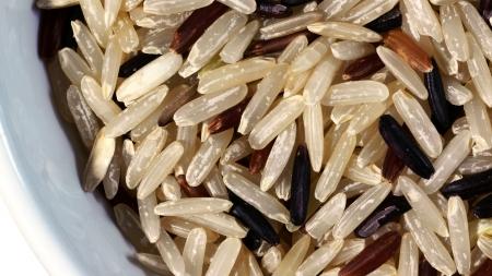 Nahaufnahme von Germinated Brown Reis mit Germ oder Embryo Lizenzfreie Bilder