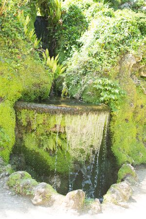water feature: water feature in a mature garden Stock Photo