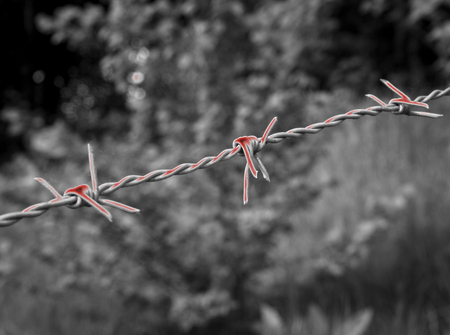 Surreal bloody barbed wire on black and white background