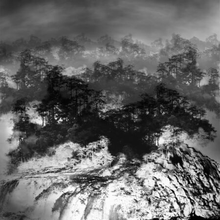 Black and white minimalist sketch of forest and waterfall