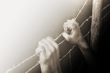 Hands grasping desperately barbed wire to get to the light