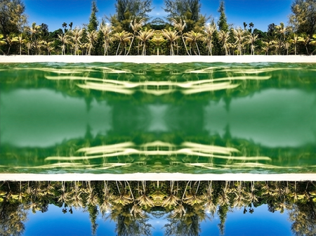 Seamless ornament composed of mirrored exotic palms and calm sea water on sunny day