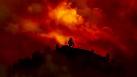 Hügel mit Bäumen, die in einem roten, orangefarbenen Lauffeuer brennen Standard-Bild