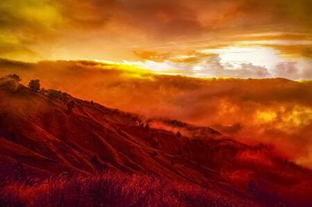 Hills with trees burning in wildfire Archivio Fotografico