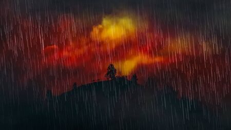 Rain over wildfire in forest