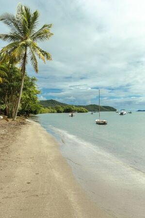 View of beach with sail boats and coconut tree on Martinique island in Caribbean Archivio Fotografico