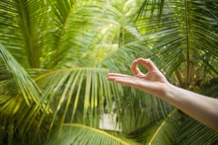 natural close up hand of woman doing yoga in mudra gyan fingers position isolated on beautiful tropical nature background in meditation relaxation and mind balance and healthy lifestyle concept