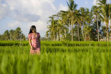 natural and fresh lifestyle portrait of  young beautiful and attractive Asian Korean woman in elegant dress walking on green rice field enjoying exotic Summer holidays trip in nature 写真素材