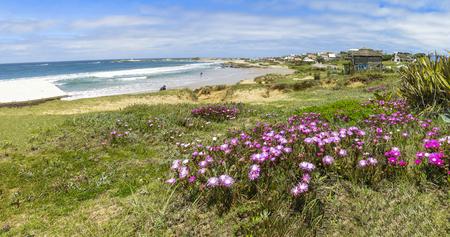panoramics: View of the town of Punta del Diablo, Rocha Uruguay