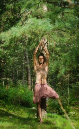 A young man is practicing the tree pose of Yoga in a peaceful Himalayan forest